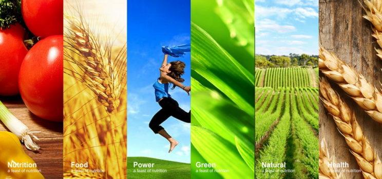 Herbal Health Natural Products 草本天然保健品